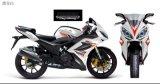 Racing Motorcycle (YL200-6E)
