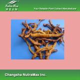 100% натуральные Сибирский Milkwort выдержка 4: 1, 10: 1, 5% Polygalic кислоты