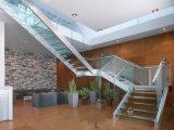 Diseños dobles de encargo de la escalera del larguero/escalera de cristal en la pisada de cristal y el pasamano de cristal de Frameless