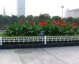 花の芝生のガードレールおよび庭の囲うこと