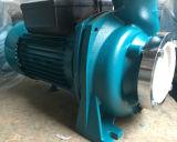 Bomba de água centrífuga elétrica da capacidade elevada de Wedo Nfm-128b 0.6kw