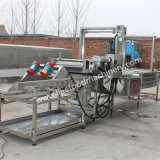 Máquina de lavagem e de secagem do loganberry do SUS 304