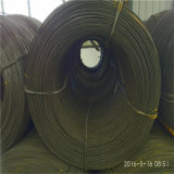 제조 가격 온화한 코일 Ungalvanized Q235/Q195 탄소 철강선