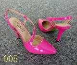 Розовый моды благоухающем курорте запаса обувь обувь (005)