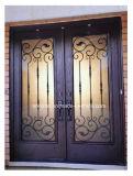 Двери и Windows утюга Америка классицистические декоративные