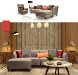 Северная мебель дома типа Европ, софа ткани просто конструкции (M610)