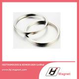 De super Sterke Aangepaste Magneet van /NdFeB van het Neodymium van de Ring van het Zink N35-52 Permanente in China