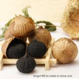 La Chine avantages nutritifs d'origine de la santé de l'ail noir simple