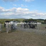 Sistema de barrera del alambre de la maquinilla de afeitar de los militares y de la policía
