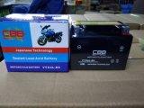 Wartungsfrei, Mf, SLA Motorrad-Batterie Ytx4l-BS (12V4AH)