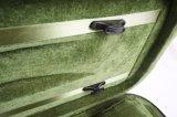 Случай скрипки зеленой нутряной продолговатой пены трудный