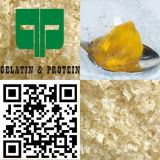 Съестной Bovine желатин кожи зернистый (80-280BLOOM)