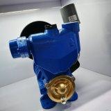Turbulenz elektrisch für Wasser-Pumpe Wzb Serie