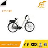 Cnebikes 36V 350W MITTLERER Bewegungselektrisches Fahrrad für Verkauf