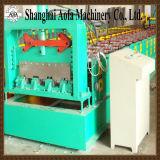 Double roulis de profil de feuille de Floor&Ibr de paquet formant la machine