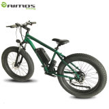 Mountain 14.5ah 48V 500W Dirty Electric Bike for