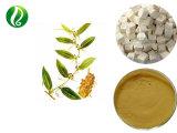 100% natürliches Poria Cocos-Auszug-Polysaccharid, Polysaccharid-Puder