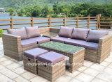 Nuova mobilia esterna per qualsiasi tempo del patio del rattan della mobilia del giardino del tessuto del rattan 2018