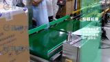 Automatischer Check-Gewicht-System für Karton-verpackenproduktionszweig