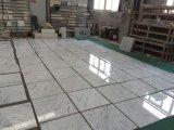 Итальянские плитки 30X30 Cararra белые мраморный