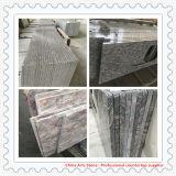 Китайский оптовый Countertop гранита мрамора/кварца для кухни и ванной комнаты