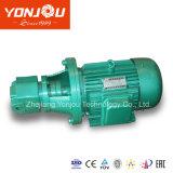Yonjou Hydrauliköl-Pumpe