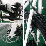 후방 선반 및 바구니를 가진 아름답게 디자인된 E 자전거