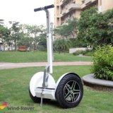 حارّة يبيع اثنان عجلة كهربائيّة دراجة نفس ميزان حركيّة كهربائيّة حركيّة [إ] [سكوتر]