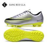 حارّ يبيع جديدة تصميم أسلوب [كلتس] كرة قدم رياضات أحذية مع [هيغقوليتي]