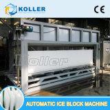 Essbare Eis-Pflanze mit Koller 10 Tonnen Selbsteis-Block-Maschinen-