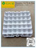 Molde de la bandeja de la pulpa para los huevos y las herramientas