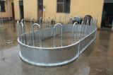 Alimentatori ovali dell'anello dell'alimentatore della balla di fieno del Bull del cavallo del TUFFO caldo del risparmiatore del fieno del bestiame grandi (XMR62)