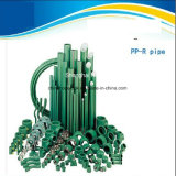 高品質の白いおよび緑PPRの付属品-管付属品