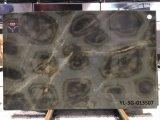Illusione della tartaruga/mattonelle & lastre della quarzite di verde alta qualità del Brasile