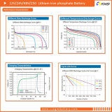 Batteria libera del fosfato del ferro del litio di manutenzione (LiFePO4) 19inch 48V50ah