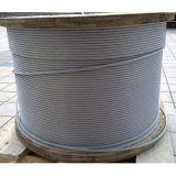 제조 중국 En12385 표준 7X19 316 스테인리스 철사 밧줄