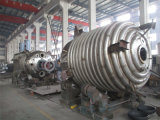 La norma ASME de calefacción eléctrico hervidor de agua de reacción química