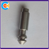 Pinを置くカスタム特別なステンレス鋼CNCの回転部品