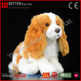 Fr71 réaliste jouet en peluche animal en peluche Douce King Charles Spaniel chien