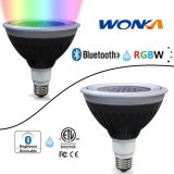 LEIDENE CREE van PAR38 Bluetooth RGBW Schijnwerper voor de Verlichting van het Landschap IP67