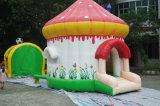 Мало детский праздник День рождения событие упругие надувной дом возврата