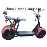Motocicleta de turismo elétrico 800W com choques F / R, 2 assentos, luzes intermitentes