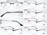 L'acciaio inossidabile incornicia il tempiale del Fashion Eyewear Acetate Spring della signora (MOD. 378)