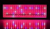 L'usine hydroponique du large spectre DEL élèvent le prix bas léger