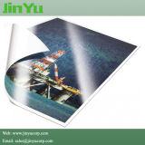 Double papier de photo du PE 260GSM avec l'encre de dissolvant d'Eco