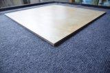 Casa de cerámica antideslizante resistente a la mate satinado baldosas del suelo rústico