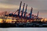 Servizio marino eccellente di logistica da Guangzhou a Kuantan