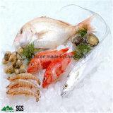 طعام تخزين, [كلد رووم], عميق - مجلّد