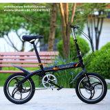 Mini bici Pocket del modelo nuevo