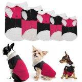 工場デザイナー美しい冬の飼い犬のコートの衣裳